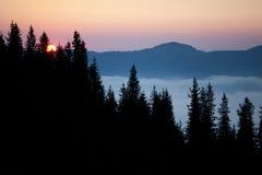 由后面照的有雾的横向夏天阳光日出 免版税库存照片