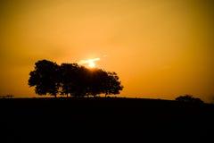 由后面照的有雾的横向夏天阳光日出 免版税库存图片