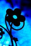 由后面照的蓝色花卉silouhette 免版税图库摄影