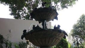 由喷泉冷静室外庭院 影视素材