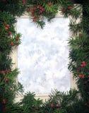 由圣诞树做的创造性的布局分支与红色berri 库存例证