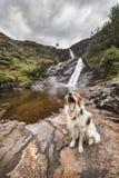 由在斯凯岛的瀑布尾随打呵欠在苏格兰 库存图片
