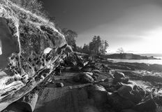 由在杰克点公园采取的海洋的岩层在纳奈莫, 库存照片