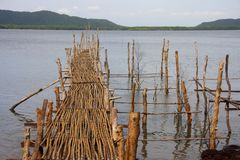 由在海湾的竹子做的木桥 库存图片