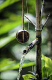 饮用的杓子和喷泉,越南 库存照片