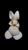 由壳制成的兔子 免版税库存照片