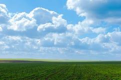 由大云彩的绿色部份领域阴影 库存图片