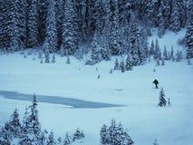 由大tipsoo, Mt更加多雨的国家公园的越野滑雪者 免版税图库摄影