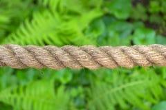 由天然纤维做的水平地被舒展的重绳索 免版税图库摄影
