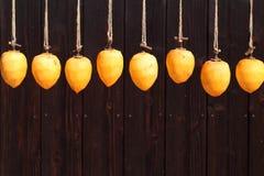 由太阳的干燥柿子 库存图片