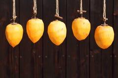 由太阳的干燥柿子 免版税库存照片