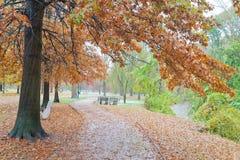 由小河的秋天路径 免版税库存图片