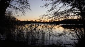 由小自然沼泽的日落 免版税库存照片