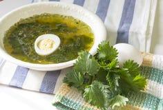 由年轻荨麻叶子做的汤 绿色素食汤用煮沸的鸡蛋 免版税库存照片