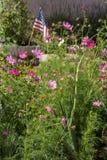 由庭院花的美国国旗周围 图库摄影