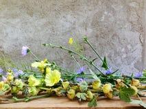 由庭院,我美丽的庭院的一个房子有美丽的野花的,酿造芬芳mdicin茶,健康和strog心脏的 免版税库存图片