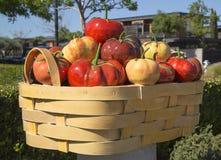 由彼得榛树的丰盈或蕃茄篮子在艺术步行在Yountville,加利福尼亚 库存图片