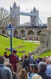 由文书上士守卫的伦敦塔游览 库存图片