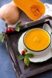 由新鲜的成熟匏南瓜做的自创奶油色汤 库存照片