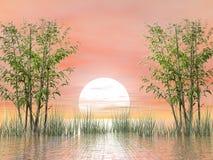 由日落的竹子- 3D回报 向量例证
