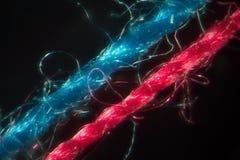 由显微镜的结构缝合针线 剥削microfiber Ñ  ontrast线蓝色和红色串黑背景 缝合的设备 图库摄影