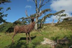 由木头做的鹿 库存图片