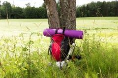 由树的旅行背包 室外旅行癖项目 旅行、旅游业和野营的设备 夏天远足的和迁徙的工具 库存图片