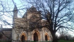 由森林的大教堂 库存图片