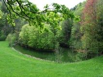 由森林的池塘在戈绍 库存照片