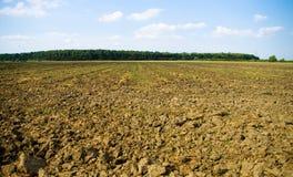 由森林的被犁的土地 免版税图库摄影