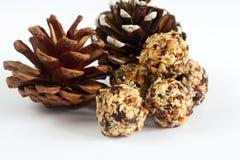 由椰子、蔓越桔和坚果做的手工制造素食主义者球 免版税库存照片