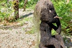 由椰子或其他树纤维做的人抽烟的滑稽的雕象,与寄生藤的头发 对象在一个森林里发现了,有tro的 图库摄影