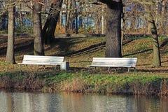 由池塘的两条长凳在公园 免版税图库摄影