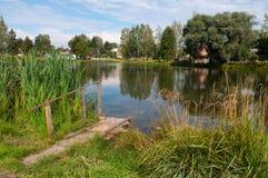 由池塘的木桥在中央俄罗斯 免版税图库摄影