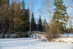 由池塘的桥梁 免版税库存图片