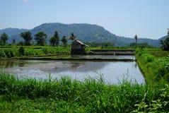 由池塘的渔小屋在山附近 免版税库存图片