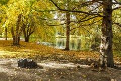 由池塘的秋天在莫斯科,爱达荷 免版税图库摄影
