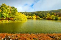 由池塘的秋天场面 免版税图库摄影