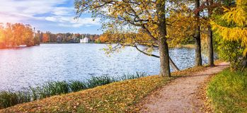 由池塘的道路在Tsarskoe Selo 库存图片