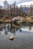 由池塘02的岩石 图库摄影