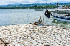 由河出海口,危地马拉钓鱼在太阳的干燥 免版税图库摄影