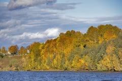由河的森林在秋天 免版税库存照片