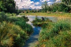 由河的瑞士风景 库存图片