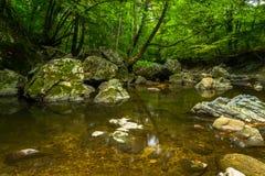 由河的石头 免版税库存照片