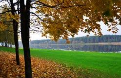 由河的秋天公园 免版税库存照片
