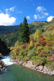 由河的美丽的山 免版税库存图片