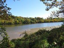 由河的美好的天 库存图片