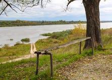由河的老长凳 免版税库存照片