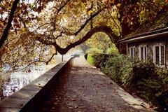 由河的舒适木房子在秋天公园 免版税库存图片
