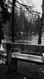 由河的长凳 免版税库存照片